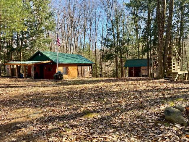 1064 State Route 69, Camden, NY 13316 (MLS #S1326876) :: MyTown Realty