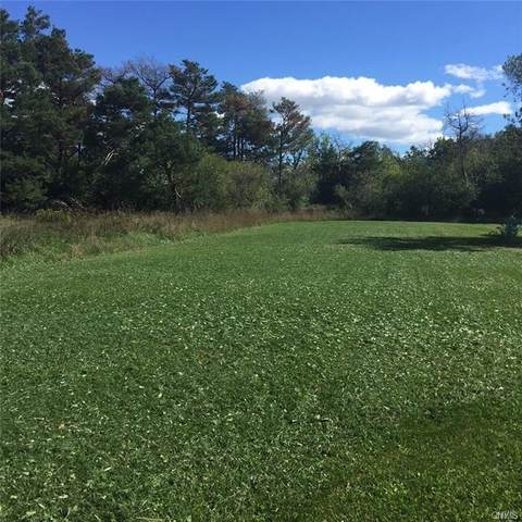 31132 County Route 179, Clayton, NY 13622 (MLS #S1328611) :: BridgeView Real Estate Services