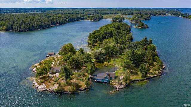 48540 Birch Island, Alexandria, NY 13607 (MLS #S1328974) :: Thousand Islands Realty