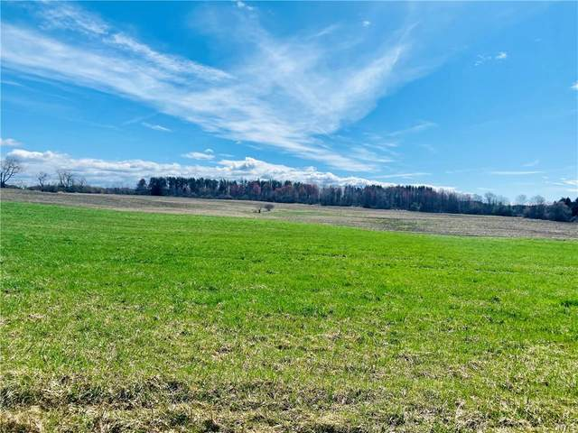 00 County Route 41, Richland, NY 13142 (MLS #S1329199) :: TLC Real Estate LLC