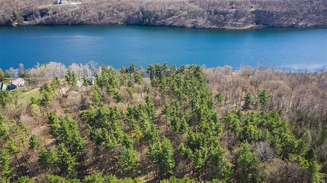 0 N Lake Road, Champion, NY 13619 (MLS #S1329484) :: BridgeView Real Estate Services
