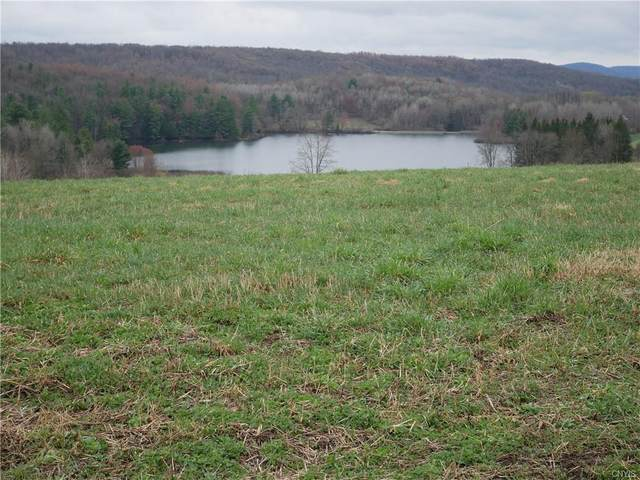 7995 Bailey Lake Road, Sangerfield, NY 13480 (MLS #S1330302) :: Lore Real Estate Services