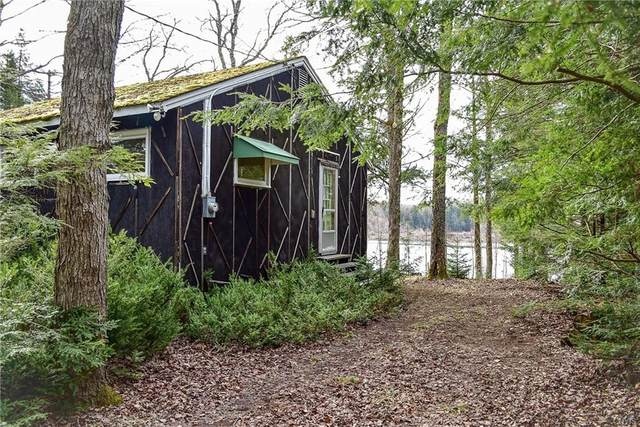 820 Route 365, Russia, NY 13438 (MLS #S1330415) :: Thousand Islands Realty