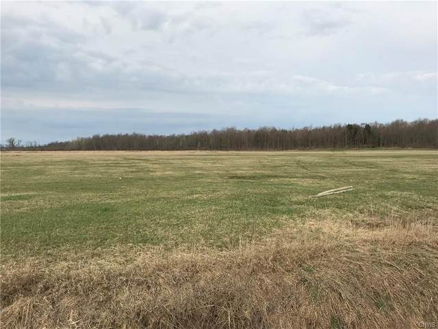 34673 County Route 15, Orleans, NY 13656 (MLS #S1331718) :: Thousand Islands Realty
