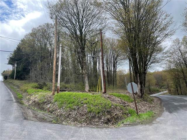 0 Murphy & Strong Road, Tully, NY 13159 (MLS #S1334269) :: 716 Realty Group
