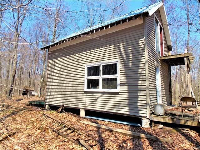 13166 Maple Hill Lane, Diana, NY 13648 (MLS #S1334532) :: TLC Real Estate LLC