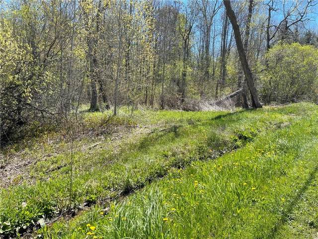 0 Bunker Hill Rd, Oswego-Town, NY 13126 (MLS #S1335692) :: Thousand Islands Realty