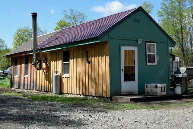 102 Frank Lacy Road, Richland, NY 13142 (MLS #S1335998) :: Robert PiazzaPalotto Sold Team