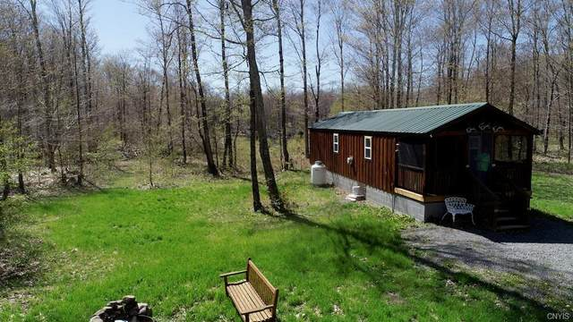 142 Brook Trout Lane, Redfield, NY 13437 (MLS #S1336459) :: Robert PiazzaPalotto Sold Team