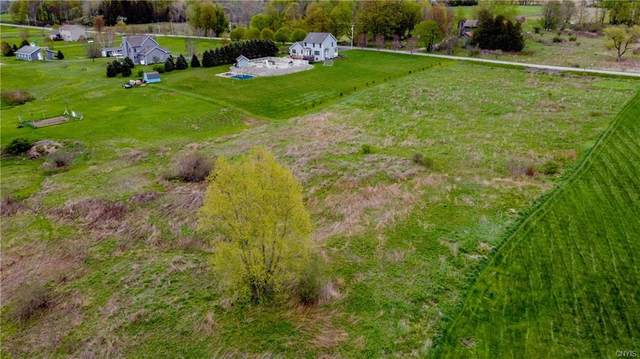 0 Ives Road, Marcy, NY 13403 (MLS #S1336492) :: Robert PiazzaPalotto Sold Team