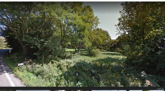 lot Berry Road, Fabius, NY 13084 (MLS #S1336654) :: 716 Realty Group