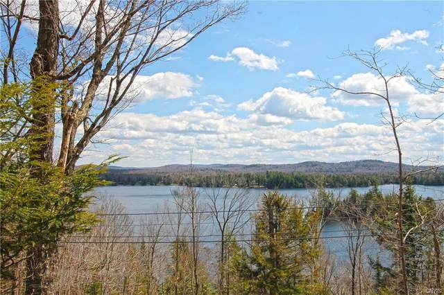 00 Route 28, Webb, NY 13420 (MLS #S1337051) :: BridgeView Real Estate Services