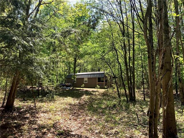 00 Tanner Road, Constantia, NY 13044 (MLS #S1338737) :: 716 Realty Group