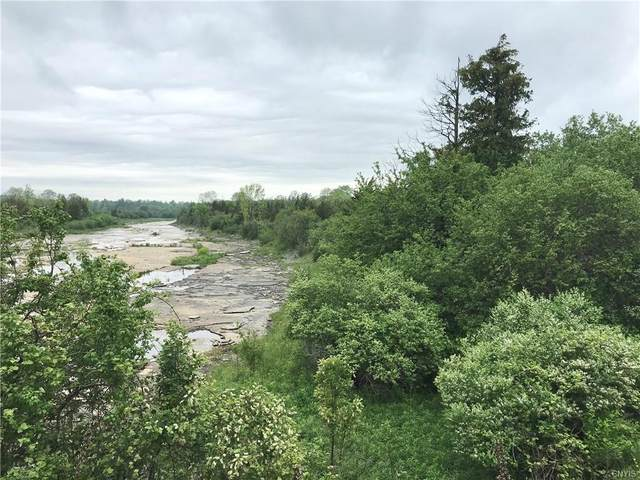 0 Nys Route 3, Hounsfield, NY 13685 (MLS #S1338871) :: 716 Realty Group