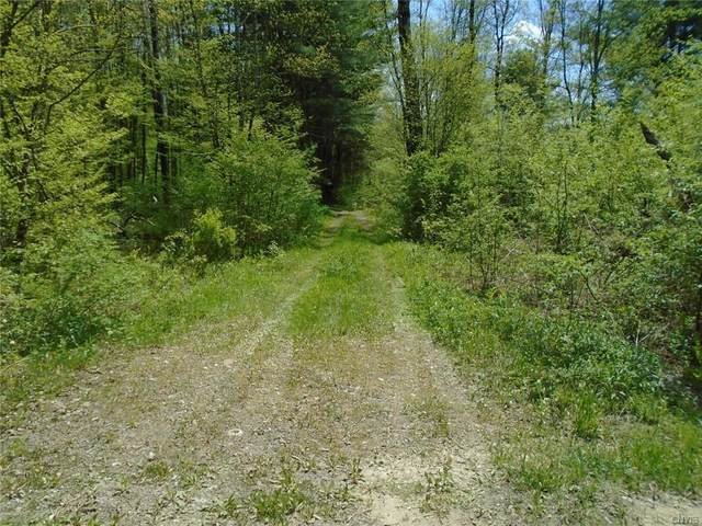 Lot 3 Willet Line Road, German, NY 13801 (MLS #S1338953) :: 716 Realty Group