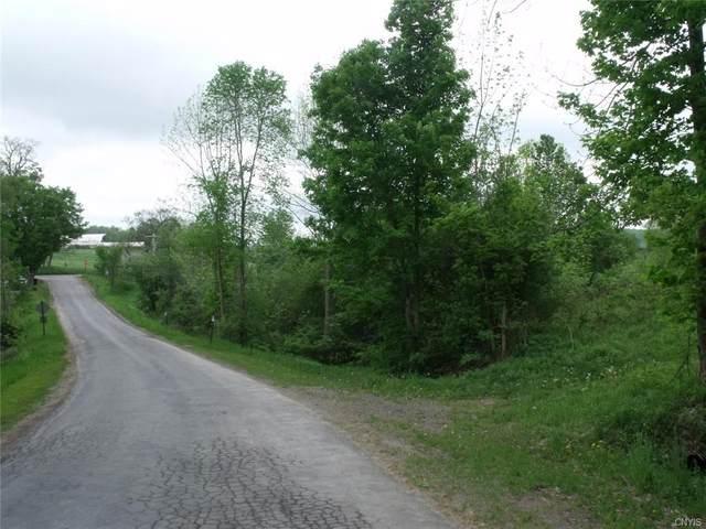 0 Polly Miller Road, Columbia, NY 13407 (MLS #S1339037) :: Serota Real Estate LLC