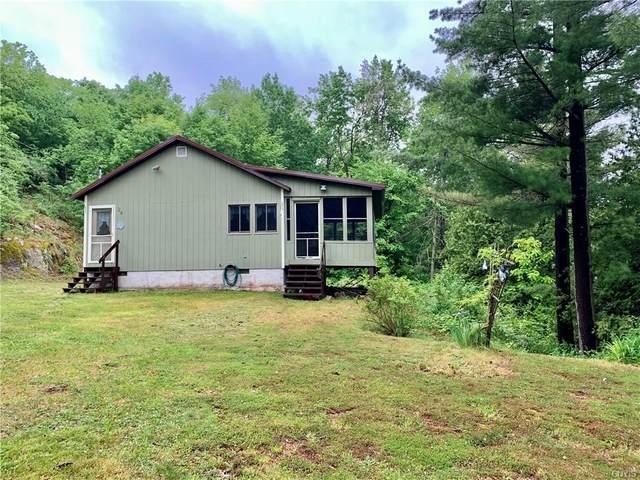 24 Downings Farm Rd/Prvt, Macomb, NY 13633 (MLS #S1340493) :: Robert PiazzaPalotto Sold Team