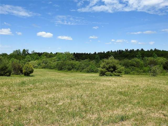 0000 Bower Road, West Turin, NY 13325 (MLS #S1340548) :: Robert PiazzaPalotto Sold Team