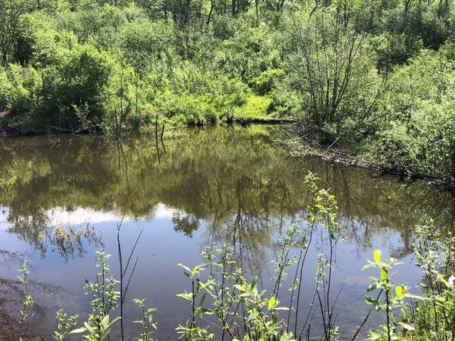 415 Hubble Hollow Road, Middlefield, NY 13326 (MLS #S1341168) :: BridgeView Real Estate Services