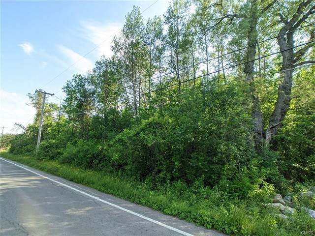 Parcel .16 Tully Farms Road, Lafayette, NY 13159 (MLS #S1341463) :: 716 Realty Group