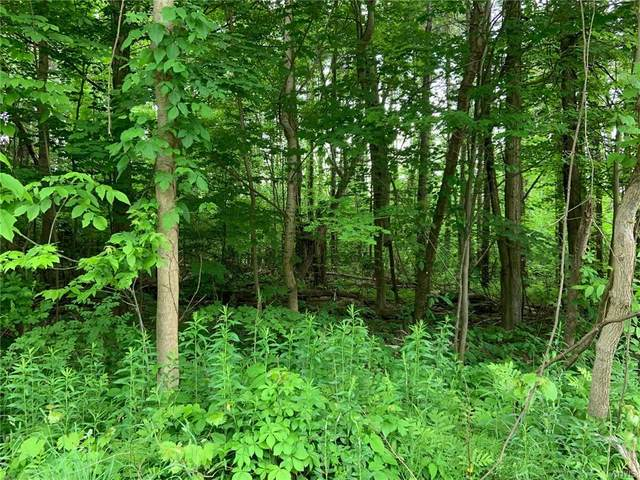 0 State Route 264, Palermo, NY 13135 (MLS #S1341576) :: 716 Realty Group