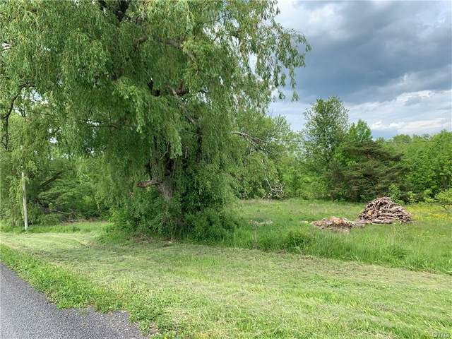 Lot 26B 0 Irwin Road, Sterling, NY 13156 (MLS #S1341660) :: 716 Realty Group