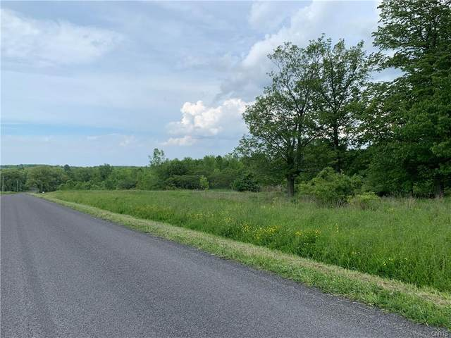 Lot 27B 0 Irwin Road, Sterling, NY 13156 (MLS #S1341679) :: 716 Realty Group