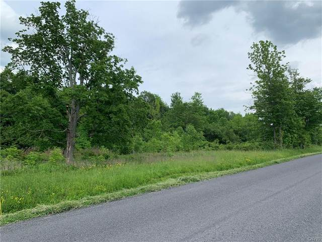 Lot 28 0 Irwin Road, Sterling, NY 13156 (MLS #S1341702) :: 716 Realty Group