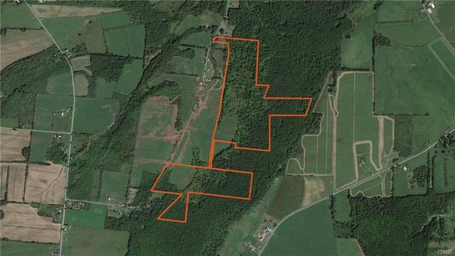 143a Eveleigh Road, Hounsfield, NY 13685 (MLS #S1341962) :: 716 Realty Group