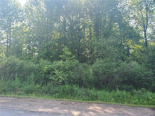 00 Muck Drive, Hannibal, NY 13074 (MLS #S1342062) :: TLC Real Estate LLC