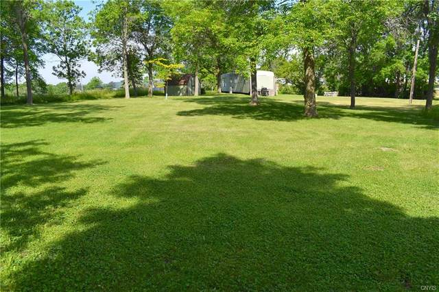 34699 Bubba Lane, Cape Vincent, NY 13618 (MLS #S1342151) :: Thousand Islands Realty
