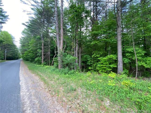 0 Pennysettlement Road, Lyonsdale, NY 13368 (MLS #S1342167) :: BridgeView Real Estate
