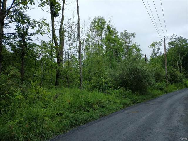 00 Partridge Hill Road, Russia, NY 13304 (MLS #S1342396) :: Robert PiazzaPalotto Sold Team