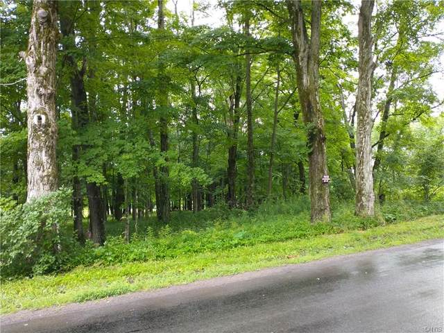 0 Blue Road, Deerfield, NY 13502 (MLS #S1342594) :: Serota Real Estate LLC