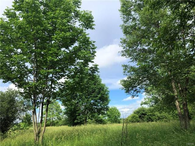 20261 County Route 189, Lorraine, NY 13605 (MLS #S1342985) :: Robert PiazzaPalotto Sold Team