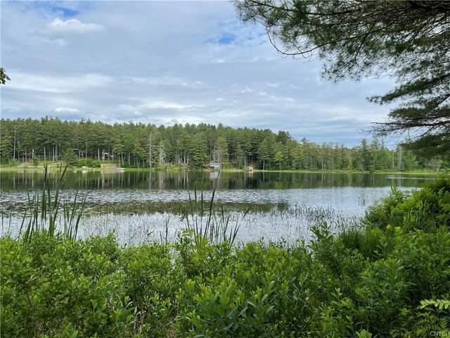0 Moose Pines Road, Watson, NY 13343 (MLS #S1343897) :: TLC Real Estate LLC