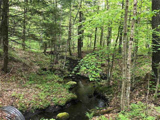 LOT 180 Mohawk Drive, Forestport, NY 13338 (MLS #S1344419) :: Thousand Islands Realty