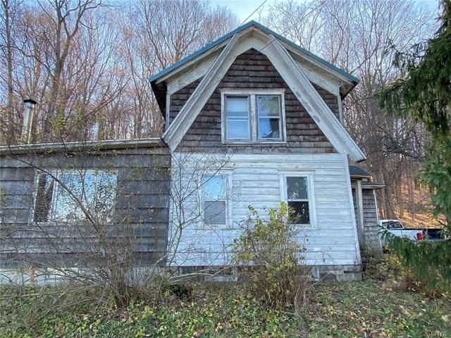 8768 Genesee Turnpike, Manlius, NY 13037 (MLS #S1345104) :: TLC Real Estate LLC