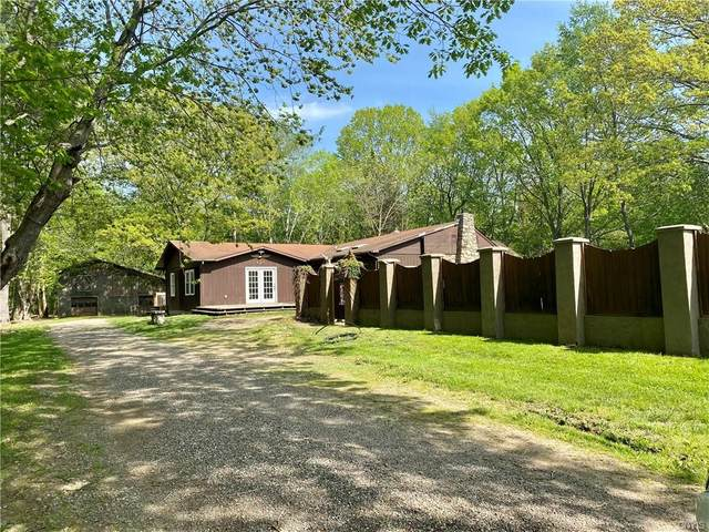 426 Nine Mile Point Road, New Haven, NY 13126 (MLS #S1345492) :: Robert PiazzaPalotto Sold Team