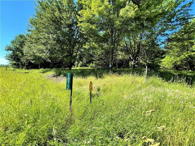 1872 State Route 69, Parish, NY 13131 (MLS #S1345819) :: BridgeView Real Estate Services