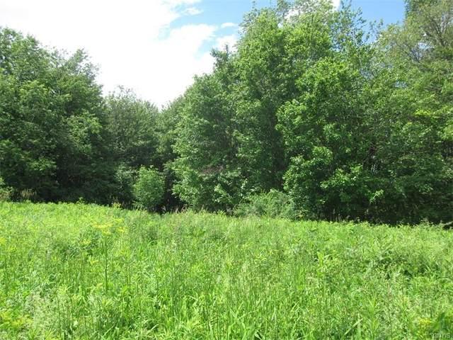 0 35 Ac Sterling Creek Road, Herkimer, NY 13350 (MLS #S1346870) :: Robert PiazzaPalotto Sold Team