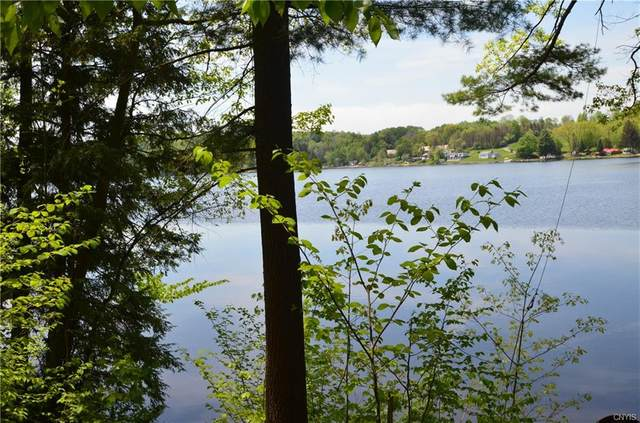 294 W Side Kyser Lake Road, Oppenheim, NY 13329 (MLS #S1346999) :: Robert PiazzaPalotto Sold Team