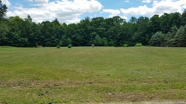 0 Millers Grove Road, Manheim, NY 13329 (MLS #S1347534) :: Thousand Islands Realty