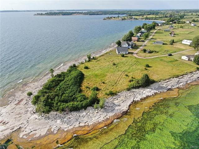 0 Wilson Point Circle, Cape Vincent, NY 13618 (MLS #S1347868) :: Robert PiazzaPalotto Sold Team