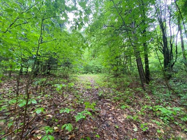 00 Mutton Hollow Road, Wheeler, NY 14873 (MLS #S1348727) :: Serota Real Estate LLC