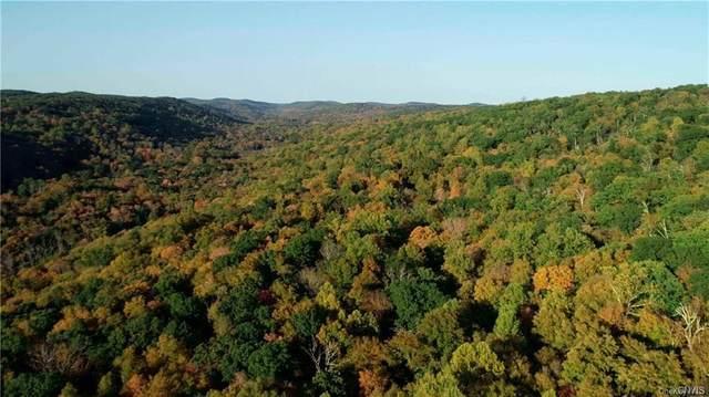 240 acres Cimarron Road, Putnam Valley, NY 10579 (MLS #S1348827) :: Robert PiazzaPalotto Sold Team
