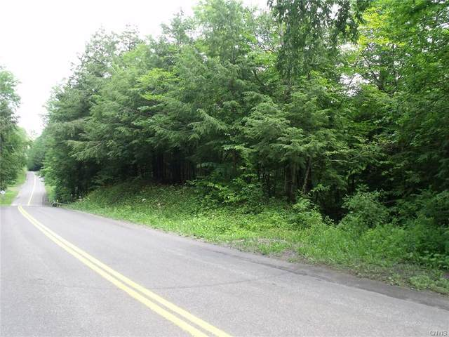 0 Hawthorne Road, Schuyler, NY 13340 (MLS #S1349632) :: Serota Real Estate LLC