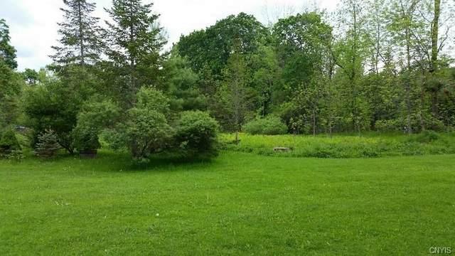 Lot 1B West Lake Rd, Cazenovia, NY 13035 (MLS #S1350228) :: Serota Real Estate LLC