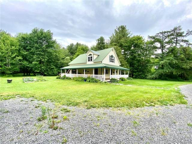 20127 Storrs Road, Hounsfield, NY 13685 (MLS #S1350685) :: Robert PiazzaPalotto Sold Team