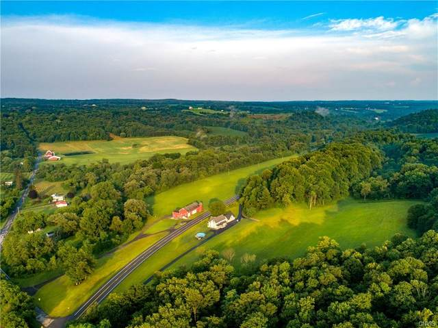 243 State Route 38, Locke, NY 13092 (MLS #S1351130) :: Robert PiazzaPalotto Sold Team
